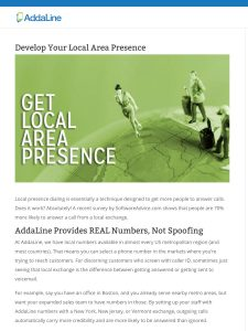 screenshot of blog article about local area presence